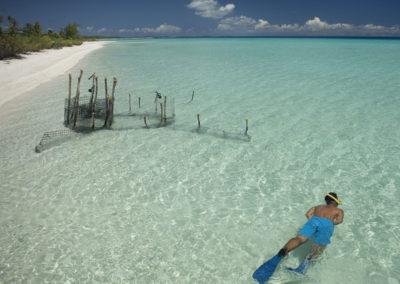Snorkling à Tikehau © Tikehau Pearl Beach Resort