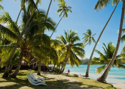 hotel-les-tipaniers-moorea-plage-e-tahiti-travel-bungalow