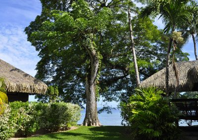 jardin-hotel-royal-huahine-e-tahiti-travel