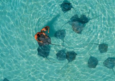 Raies Pasteunagues - © Tahiti Tourisme