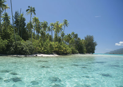 Enticing & Charming Moorea discovery