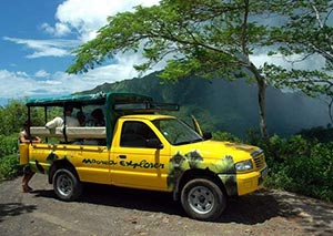 Moorea 4WD Safari – Visit the most impressive sites