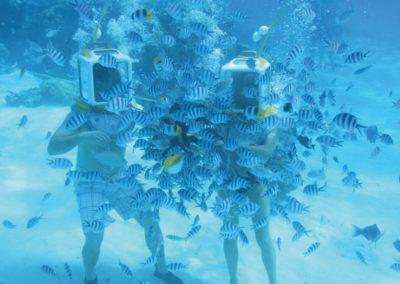 © Aqua Safari Bora Bora