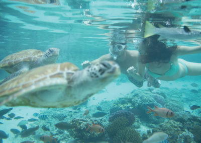 sejour-luxe-bora-bora-meridien-e-tahiti-travel-mooreatravel-hotel-manava-pearl-tortue