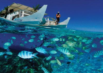 diapo4-excursion-safari-jet-ski-raies-requins-bora-e-tahiti-travel