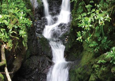 diapo5-excursion-randonnée-raiatea-e-tahiti-travel