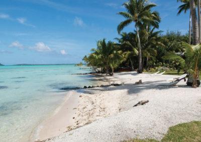 @ Pension Alice & Raphael - Bora Bora
