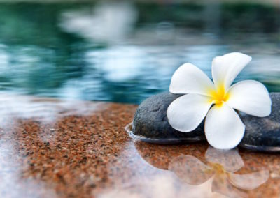 Wellness Retreat in Tahiti & Moorea